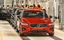 Volvo triệu hồi hơn nửa triệu xe trên toàn thế giới