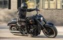 Harley-Davidson Fat Boy kỷ niệm 30 năm hơn 500 triệu đồng tại Mỹ