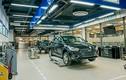 TC MOTOR tăng thời gian bảo hành xe Hyundai do COVID-19