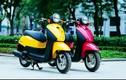Người dùng xe máy dưới 50cc, xe máy điện phải có GPLX