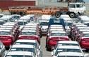 Ôtô nhập khẩu về Việt Nam tăng gần gấp đôi trong tháng 8