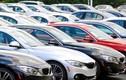 Ôtô nhập giảm thê thảm, toàn thị trường ngóng chờ xe mới