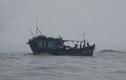 15 ngư dân trôi tự do trên biển Hoàng Sa