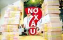 ADB: Lạm phát của Việt Nam còn 6,5% năm 2013