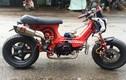 Chi 50 triệu đồng biến Honda Chaly 50cc thành 110cc