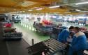 Liên tiếp bắt trộm cắp tại sân bay Nội Bài