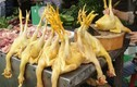 Cách nhận biết thịt gà nhuộm hóa chất vàng da độc hại