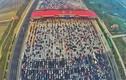 Phát sợ cảnh hàng nghìn ô tô chôn bánh trên cao tốc