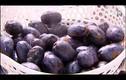 Những món ăn tuyệt ngon, dễ làm từ quả cọ