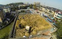 Nông dân trồng lúa trên mái nhà 4 tầng