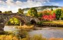 Cảnh sắc mùa thu tuyệt đẹp trên khắp thế giới