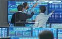 Cổ phiếu PNJ bứt phá mạnh, VN-Index vượt mốc 910 điểm