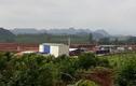"""Dự án chăn nuôi nghìn tỷ của Masan tại Nghệ An bị """"tuýt còi"""""""
