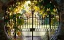 Mê mẩn 12 mẫu cổng nhà được ưa chuộng nhất năm 2017