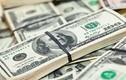 Tỷ giá trung tâm lập kỷ lục mới, USD ngân hàng tăng mạnh