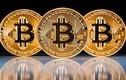 NHNN Việt Nam đang nghiên cứu khả năng ứng dụng Bitcoin?