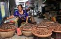 Làm sao để tìm mua được hạt dẻ Trùng Khánh chính gốc?