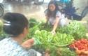 Rau xanh tăng giá gấp 2 -3 lần sau mưa bão