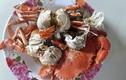 Sự thật về cua biển siêu rẻ