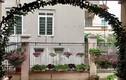 Ngắm nhà phủ đầy hoa quý của ca sĩ Bích Phương