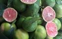 """Rớt giá thê thảm, hàng loạt trái cây """"kêu cứu"""" chợ mạng"""