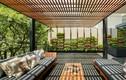 Choáng ngợp căn hộ với hàng trăm cây xanh trùm kín tường