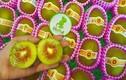 Tận mục kiwi cầu vồng 200.000 đồng/quả gây sốt thị trường Tết 2018
