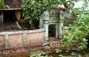 Mê mẩn những bonsai tiểu cảnh làng quê đẹp hút hồn