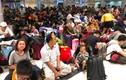 Máy bay liên tục trễ chuyến, hàng nghìn khách vạ vật ở Tân Sơn Nhất