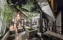 Quán cà phê khung thép ngập sắc xanh ở Hà Nội