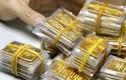 Giá vàng hôm nay 23/3: Ồ ạt mua gom, vàng treo ở đỉnh