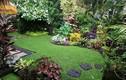 8 sai lầm cần tránh khi thiết kế sân vườn