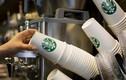 """Những lần """"ông lớn"""" Starbucks bị tố kém chất lượng"""
