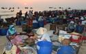 Kỳ lạ khu chợ chỉ họp vào mùa hè ở Quảng Nam