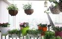 10 mẫu ban công chung cư nhỏ đẹp đầy thơ mộng