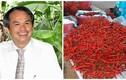 Bầu Đức lại rót thêm nghìn tỷ trồng chuối và ớt