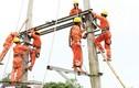 Giá điện nguy cơ tăng như thế nào trong năm 2019?