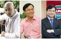 Điểm danh doanh nhân tuổi Hợi thành công nhất Việt Nam