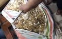 Cách trộm 455 lượng vàng dễ không ngờ suốt 6 năm đằng đẵng