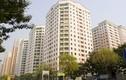"""Vinaconex muốn """"nhồi"""" cao ốc tại KĐT Trung Hòa - Nhân Chính: Thủ tướng yêu cầu xử lý"""
