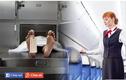 Ám ảnh nữ tiếp viên hàng không: Người ngồi ghế hành khách là xác chết