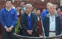 Truy tố con rể cựu Chủ tịch NH Dầu khí toàn cầu