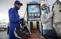 Giá xăng dầu hôm nay 10/6: Giá xăng sẽ tăng nhẹ