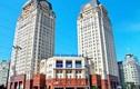 'Ông lớn' Sông Đà gây choáng khi lợi nhuận trước thuế thấp kỷ lục