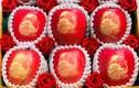 Táo đỏ Nhật Bản giá gần 500.000 đồng/quả có gì đặc biệt?