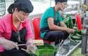 """Cận cảnh """"dây chuyền"""" làm bánh chưng siêu tốc đầu tiên tại Việt Nam"""