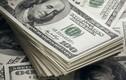 Tỷ giá ngoại tệ 11/1: USD tăng nhẹ chờ diễn biến thỏa thuận Mỹ-Trung