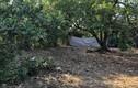 Tá hỏa phát hiện thi thể bé gái trong bao tải