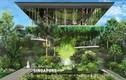 Loạt công trình kiến trúc đồ sộ, hoàng tráng sẽ hoàn thành năm 2020