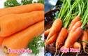 Cách phân biệt 9 loại rau củ hay ăn nhất, tránh mua phải hàng Trung Quốc